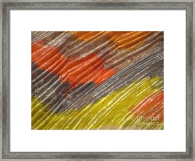 A Fraction Of Treasures 9 Framed Print