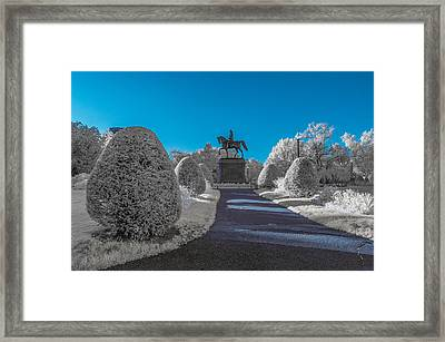 A Frosted Boston Public Garden Framed Print