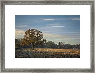 A Frosty Autumn Morning Framed Print