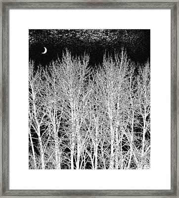 A Frosty Winter Night Framed Print