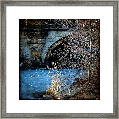 A Frozen Corner In Central Park Framed Print