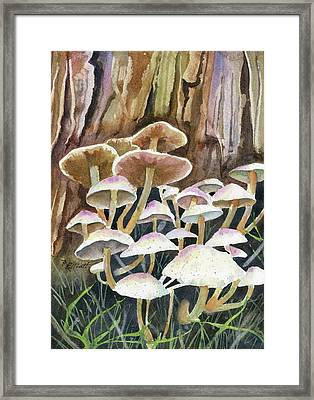 A Fungus Amongus Framed Print by Marsha Elliott
