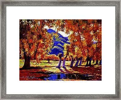 A Galaxy Of Autumn Color Framed Print by David Lloyd Glover