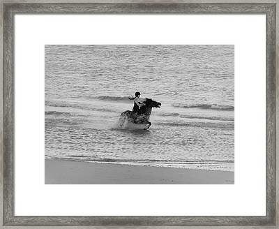 A Gallop Framed Print by Martin Newman
