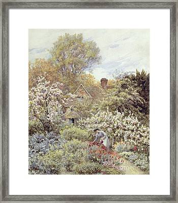 A Garden In Spring Framed Print by Helen Allingham