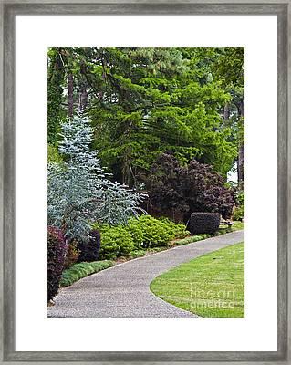 A Garden Walk Framed Print