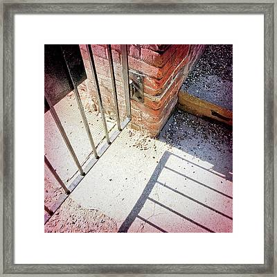 A Gate With Shadows Framed Print by Tom Gowanlock