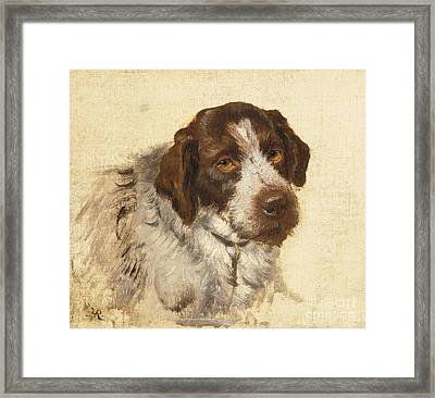 A German Wirehaired Pointer Framed Print by MotionAge Designs