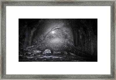 A Giant In The Forest Framed Print by Mark Andrew Thomas