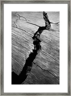 A Giants Death-bark Detail Framed Print by Brigid Nelson