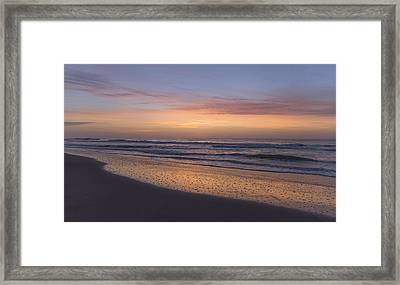A Gift Every Morning Framed Print by Betsy Knapp