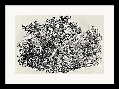 Bewick Framed Prints
