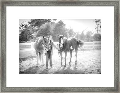 A Girl With Horses Framed Print by Kelly Hazel
