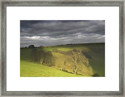 A Glimpse Of Sun Framed Print by Hazy Apple