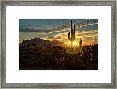 A Glorious Sonoran Morning  Framed Print