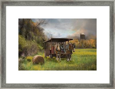 A Golden Day Framed Print by Robin-Lee Vieira