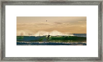 A Golden Surfing Moment Framed Print by Odille Esmonde-Morgan