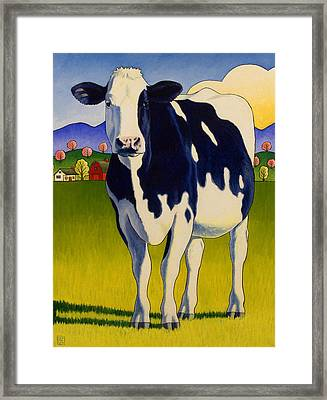 A Good Looking Cow Framed Print by Stacey Neumiller