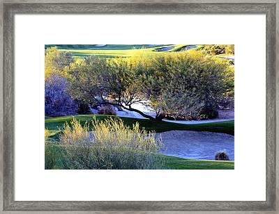 A Good Walk Spoiled Framed Print by Linda Dunn