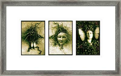 A Graft In Winter Triptych Framed Print