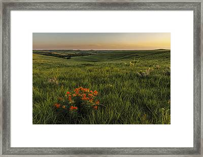 A Great View Of The Flint Hills Framed Print