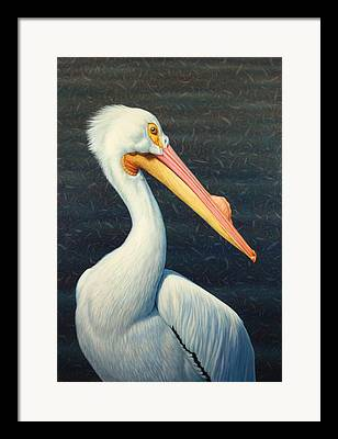 Great Birds Framed Prints