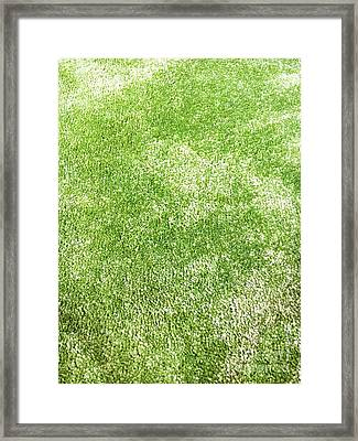 A Green Carpet Framed Print