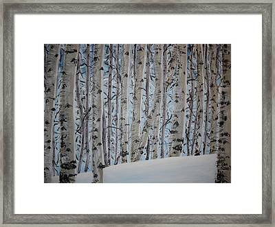 A Grove Of Aspens Framed Print
