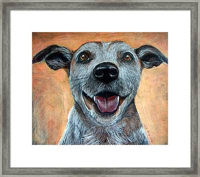 A Happy Mutt Framed Print