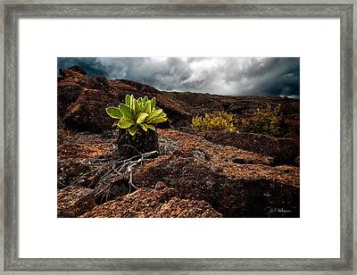 A Hard Existence Framed Print by Christopher Holmes