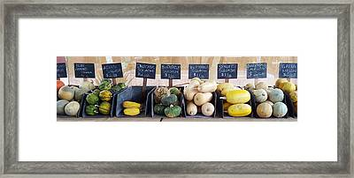 A Healthy Line Up Framed Print by Karyn Robinson