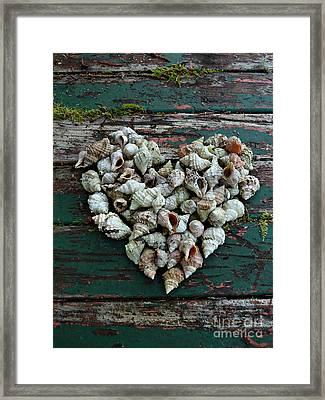 A Heart Made Of Shells Framed Print by Patricia Strand