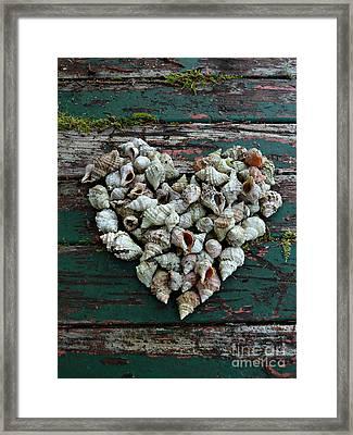 A Heart Made Of Shells Framed Print