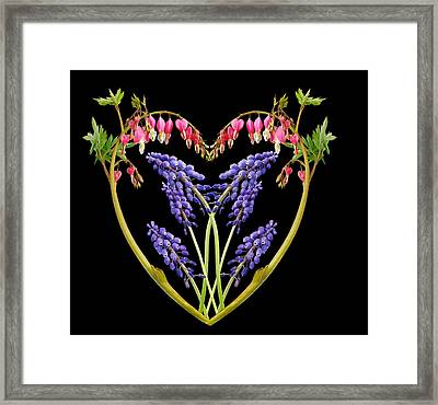 A Heart Of Hearts Framed Print by Michael Peychich