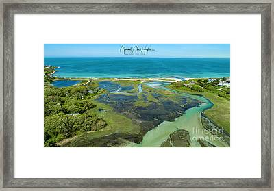 A Hidden Treasure Framed Print