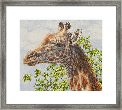 A Higher Point Of View Framed Print