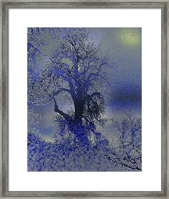 Framed Print featuring the photograph A Hoar Frost Morning by Irma BACKELANT GALLERIES