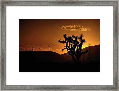 Framed Print featuring the photograph A Holy Joshua Tree by Peter Thoeny