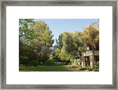 A Home In Phoenix Framed Print by Susan Heller