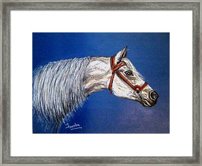 A Horse With No Name Framed Print by Fareeha Khawaja