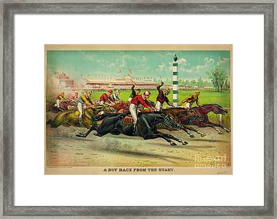 A Hot Race From The Start Framed Print