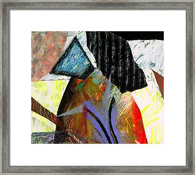 A House Divided Framed Print by Sue Reed