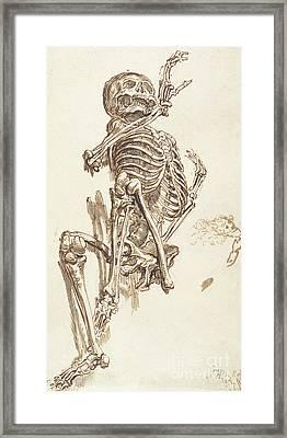 A Human Skeleton Framed Print