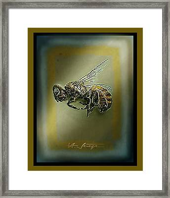 A Humble Bee Remembered Framed Print