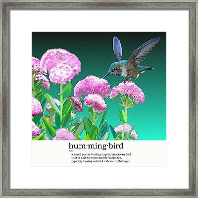 A Hummingbird Visits Framed Print