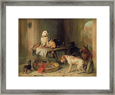 A Jack In Office Framed Print by Sir Edwin Landseer