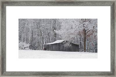 A January Day Framed Print by Benanne Stiens