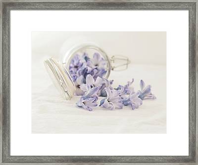 Framed Print featuring the photograph A Jar Of Purple Sweetness by Kim Hojnacki