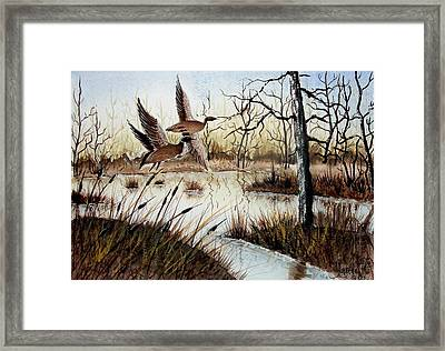 A 'jerry Yarnell' Study Framed Print