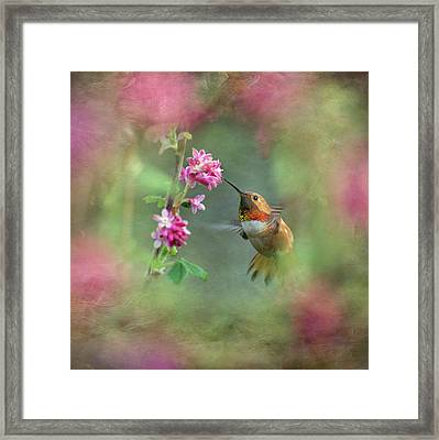 Framed Print featuring the photograph A Jewel In The Flowers by Angie Vogel